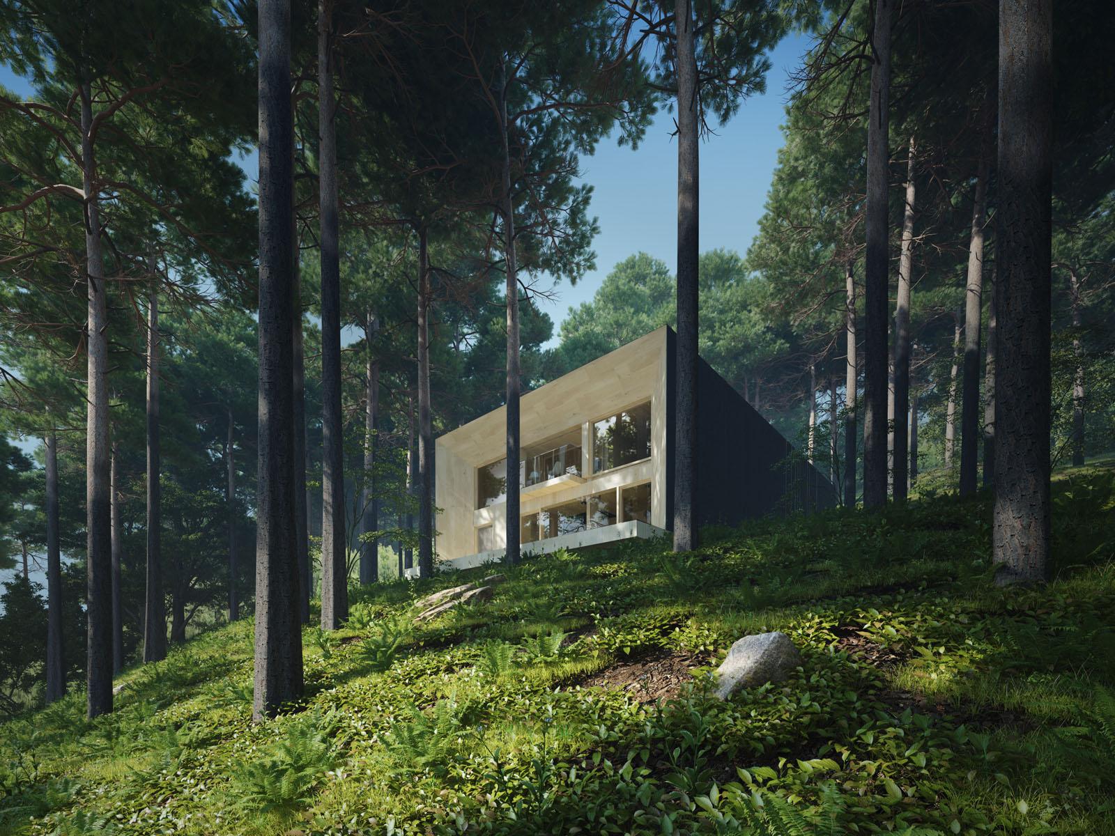 Dom w lesie, pojezierze brodnickie